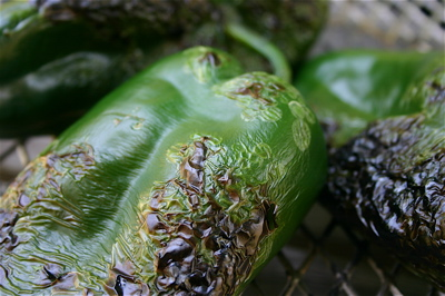 Roasting poblano chiles on a stovetop grill gives the fruity-tasting peppers a hint of smoke. Once peeled and diced, the mildly spicy chiles can add zest to a host of recipes, from grilled steak and lamb stew to lightly cooked squash and corn.