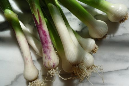 Last Saturday I found heaps of green garlic at the market. These stalks were pulled from the earth after the cloves have developed, but before the skins that separate them have dried. Cooked, green garlic has a sweet, mellow flavor with just a whiff of the mature bulb.
