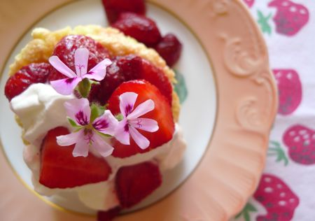 There's nothing like sponge cake for drinking up all the luscious juices of strawberries macerated with rose geranium leaves. Spoon clouds of whipped cream over it all. Can't you feel summer coming in?