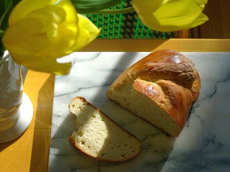 L1130470tulips&challah-460wide