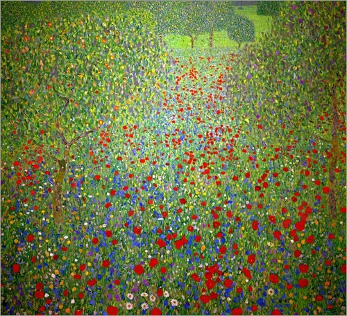 Gustav Klimt Poppy Field:520wide