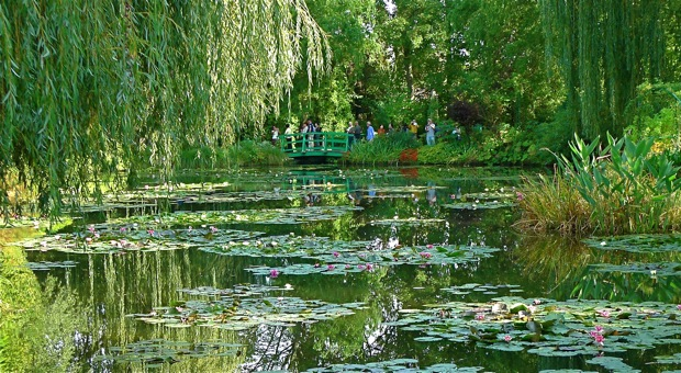 L1010049Giverny:waterlilies:620wide