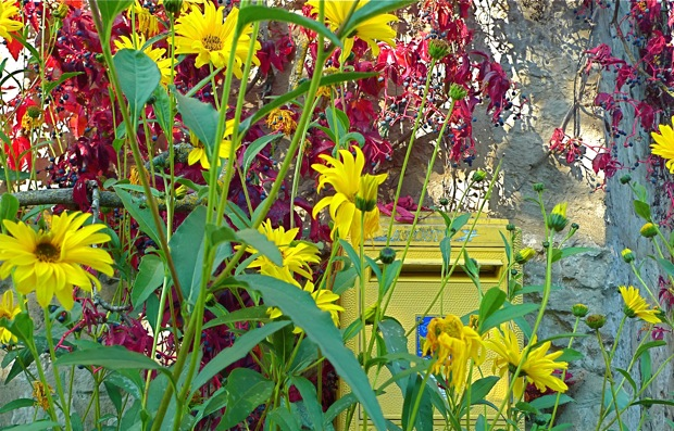 L1010133Giverny:yellowmailbox:620wide